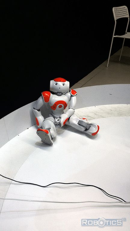 Robot Assistant «Nao» from France.